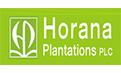 Horana Plantations